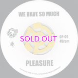 PLEASURE WE HAVE SO MUCH / THE BLACKBYRDS BLACKBYRD'S THEME / 45""