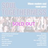 "V.A. (SOUL TOGETHERNESS) / SOUL TOGETHERNESS 2020 ""2LP"""