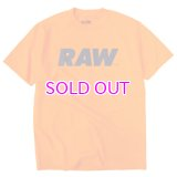 RAW LOGO PRIMARY TEE